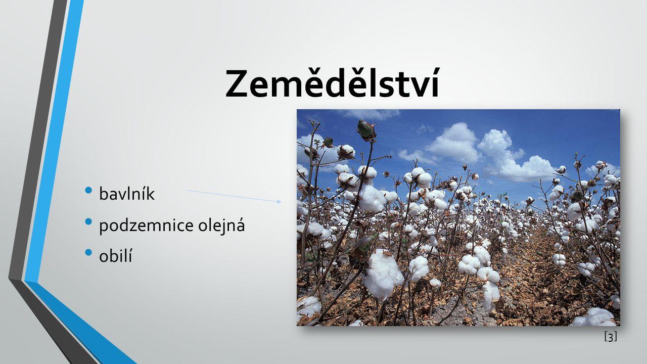 Zemědělství bavlník podzemnice olejná obilí [3]